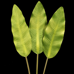 Satin banana leaf